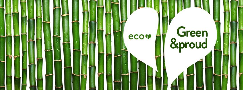 Ecoheart_05